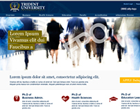 Trident University online Ph.D. Microsite