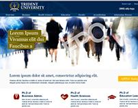 Trident University online Ph.D. Microsite