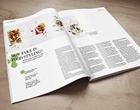 Magazine layout exercise