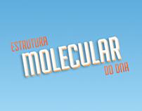 INFOGRAFICO - ESTRUTURA MOLECULAR