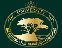 University DFE