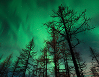 """Emerald night"""