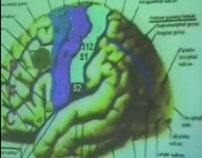Brain Functional Areas2-Parietal Lobe – Sanjoy Sanyal