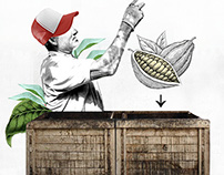 THE CACAO PROCESS