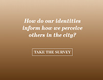 Identity Survey Design