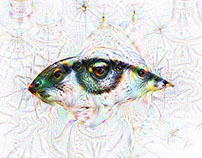 /diːp//driːm/ DEEP DREAM