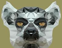 Poly Lemur