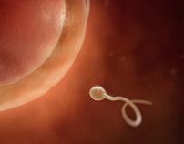 Lottery - Sperm