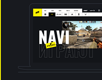 NAVI website concept