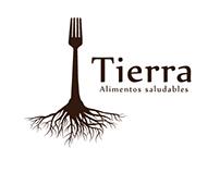 Manual de marca, Creación de Logo - Tierra