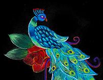 ♥ Peacock ♥