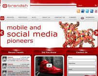 Brandsh Website redesign
