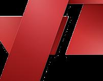 Pro-hosting Logo Concept