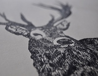 Woodland Illustrations