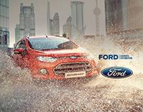 Ford Ecosports - Customized