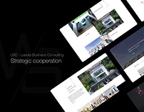 LBC Consulting / Strona WWW
