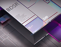 BDSR   LITE 2020-2021