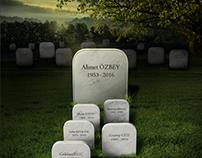 Organ Donation - Grave