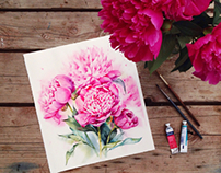 Steps of watercolor pink peonies