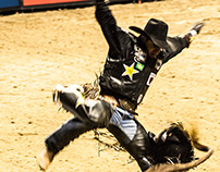 Flying cowboys... and some bulls too