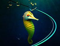 Little Sea Horse