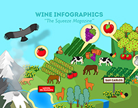 Wine Regions Infographics