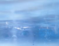 Daydream underwater creatures