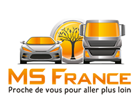 Logo Design - MS France