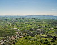 Green Sicily