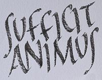 SUFFICIT ANIMUS / Gli occhiali del Vate