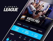 E-sport leagues