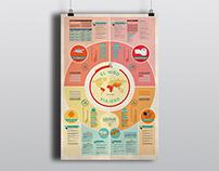 The traveler kid infography