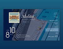 Molitor Vinyl Album: Online Streaming Landing Page