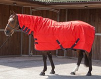 Horse Equipment - Robinsons