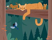 Curiosity Grove