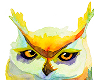 owl for t-shirt