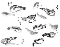 東京河豚日記 Tokyo Fugu Diary