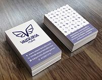 Valquiria Studio (Rebrand)