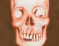 Ilustración cráneo. Realizado con pasteles