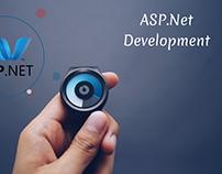 Want ASP.Net Development ?