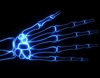 Bones X-Ray of Human Hand