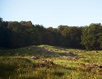 Landscape in Corona Renderer