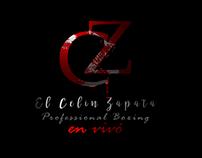 Logo y Flyer Celin Zapata