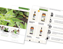 Natural Health and Wellness - Branding Collateral