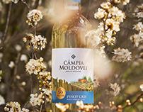 Moldovan Wine Label Design – Câmpia Moldovei
