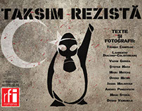 Taksim stands - the anatomy of a protest