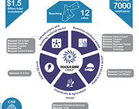 Manaseer Group Infographic