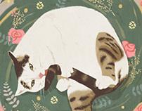 Grooming cat