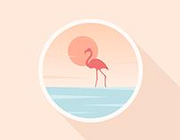 20151017.icon.《Flamingo》