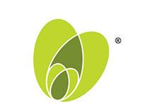 Bakalianos Organic Olive Farming